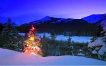 クリスマスキャンプ